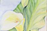413 - Flores. Lirios de agua. Acuarela/papel. (40x20). 2006. Mas