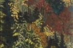 124 - Árboles. Bosque otoñal. Oleo/tela. (55x33) 10M. 2005. Vall d'Aran